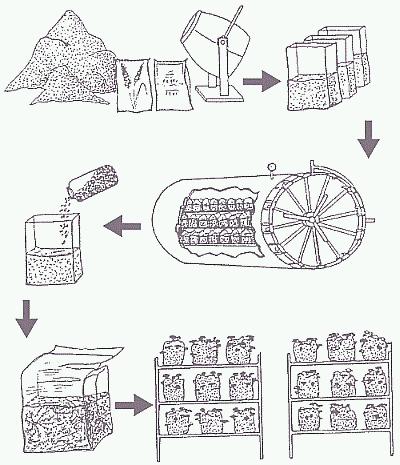 Общая схема интенсивного